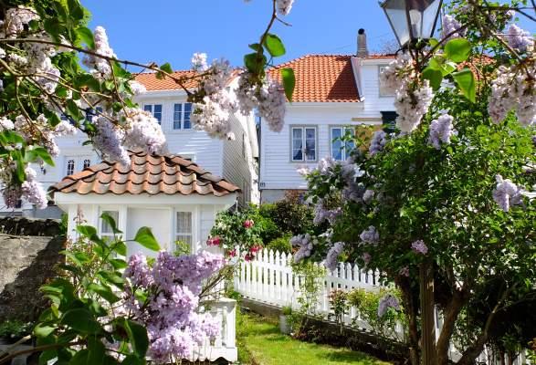 Ny lesertur med Hitra-Frøya